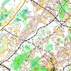 Orienteering Map